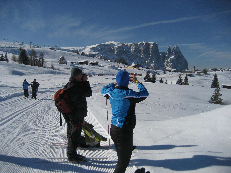Panorama Südtirol 1